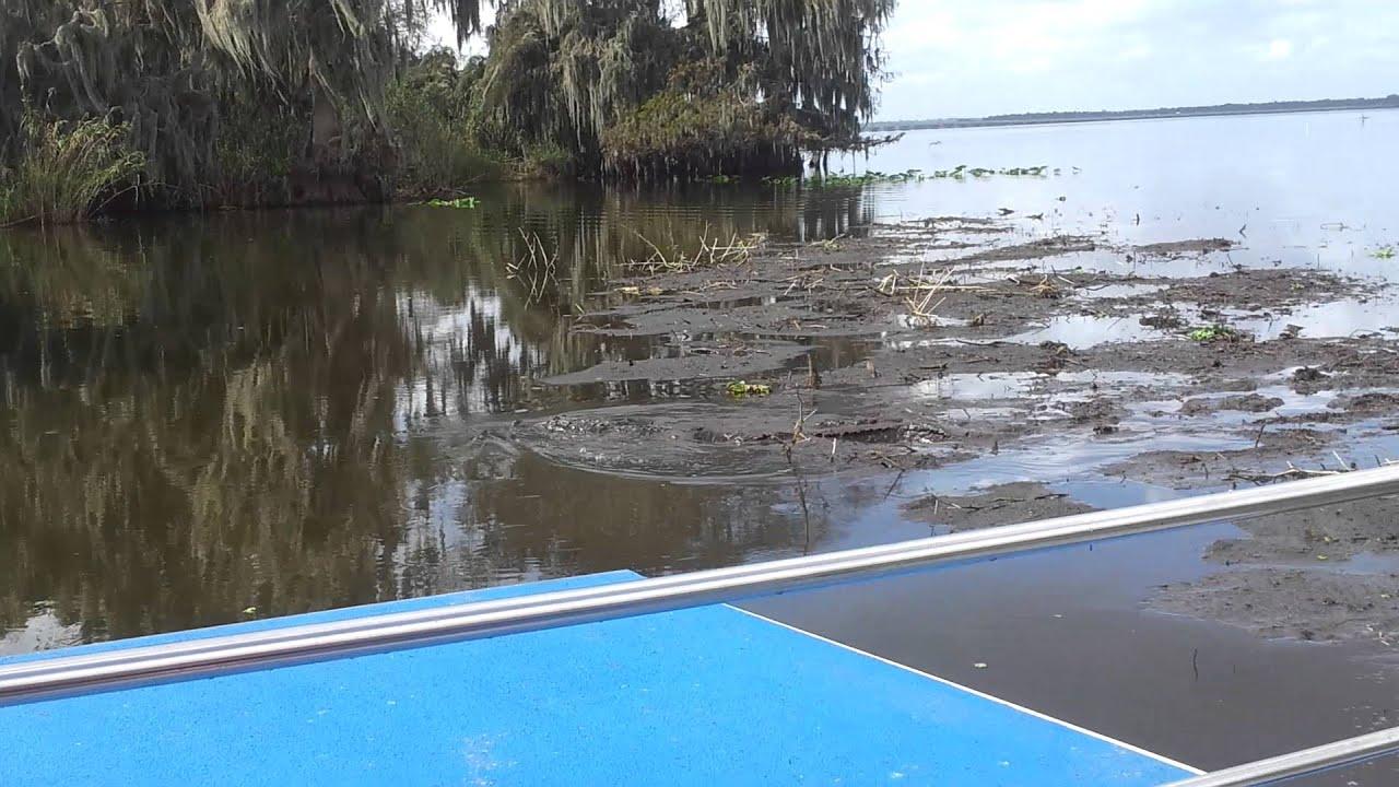 airboat gator tour on lake jesup airboat gator tour on lake jesup   youtube  rh   youtube