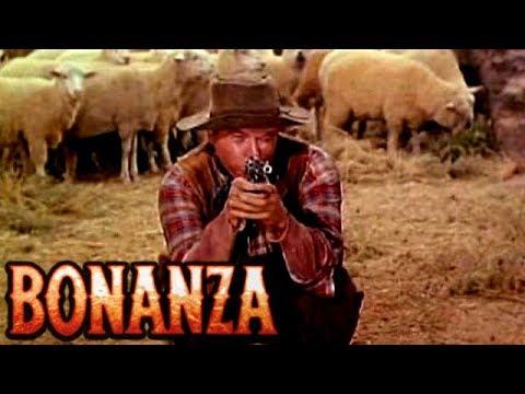 SILENT THUNDER   BONANZA   Dan Blocker   Lorne Greene   Western   Full Episode   English