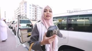 Video COMEDY TRAVELER - Dubai 2 (8/7/2017) Part 1 download MP3, 3GP, MP4, WEBM, AVI, FLV Oktober 2018