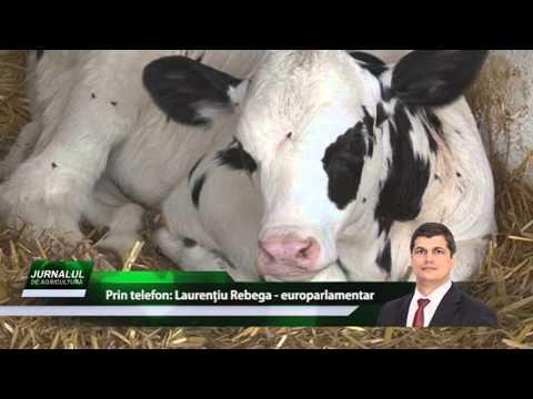 JURNALUL DE AGRICULTURA cu DANIEL CONSTANTIN, p2