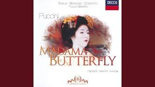 Puccini: Madama Butterfly / Act 2 - Io so che alle sue pene... Addio, fiorito asil