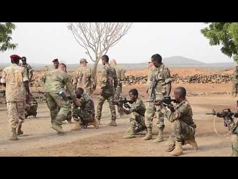 DFN:CJTF-HOA Training Djibouti's Rapid Intervention Battalion DJIBOUTI 07.15.2018