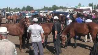 Kyrgyz Weekend. Central Asia. Food, Market, Music, Issyk Kul, Bishkek. Silk Road travel. Kambiz