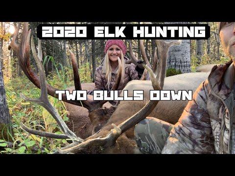 2020 Elk Hunting: Two Bulls Down (Re-mastered)