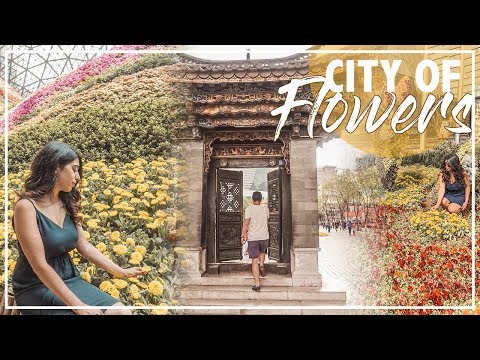 Kunming, Flower City | Most Beautiful City in CHINA,云南昆明自由行
