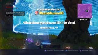 Fortnite battle royale (ad un passo dalla vittoria)