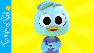 Dúo Tiempo de Sol - Un Pato