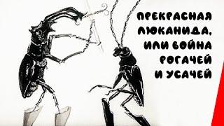 Прекрасная Люканида, или война рогачей и усачей (1912) фильм смотреть онлайн