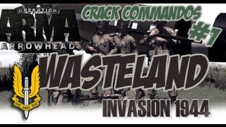Arma 2 i44 Mod Wasteland - Crack Commandos #1