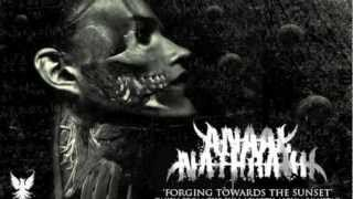 Watch Anaal Nathrakh Forging Towards The Sunset video