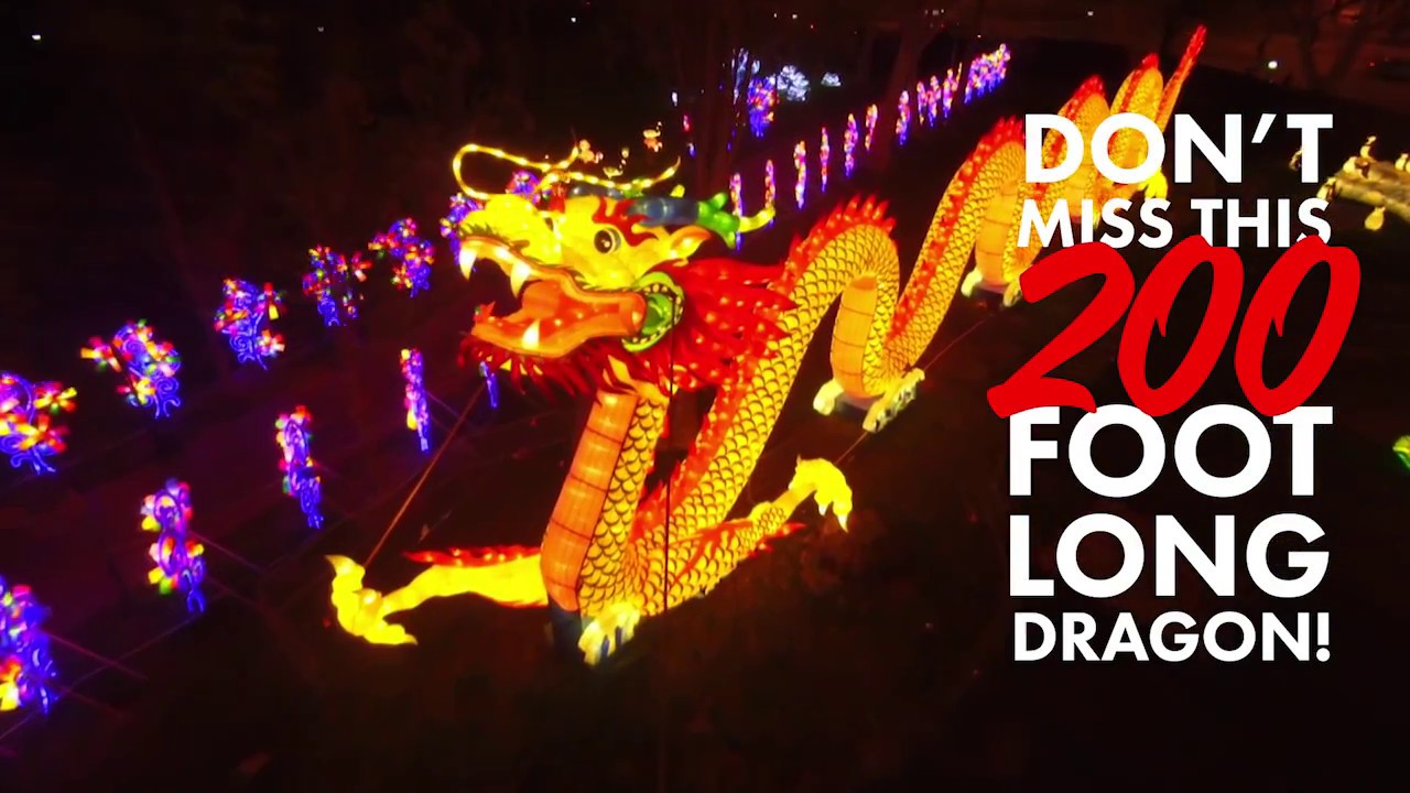 chinese lantern festival dragon facts youtube