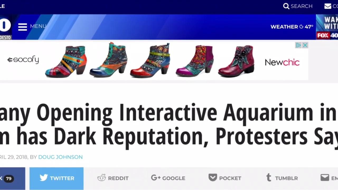 Seaquest Interactive Aquarium Las Vegas Protest