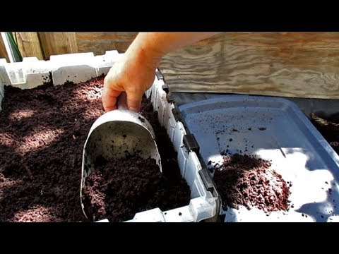 Harvesting Worm Castings | Highly Effective Method For Separating Out The Worms!