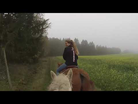 Horse Back Riding In Germany