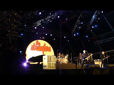 "The Stranglers ""Peaches"""