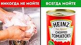 Хотите купить ☞ дегидраторы ➩ промышленное оборудование для профессиональной кухни ресторана ➩ доставка в харьков, киев и по украине.