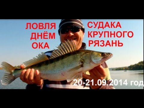 рыбалка в рязанской области отчеты рыбаков 2016