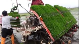 Download New Technology for Agriculture Mp3 and Videos