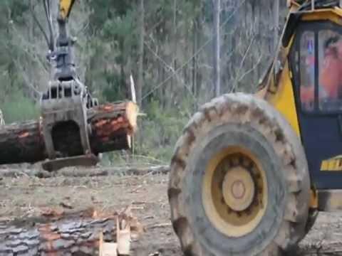 Bell Logger Radiata Pine - Chile - Full Trees Cable Hauler