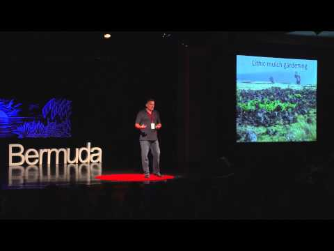 Lessons from Easter Island   Carl Lipo   TEDxBermuda