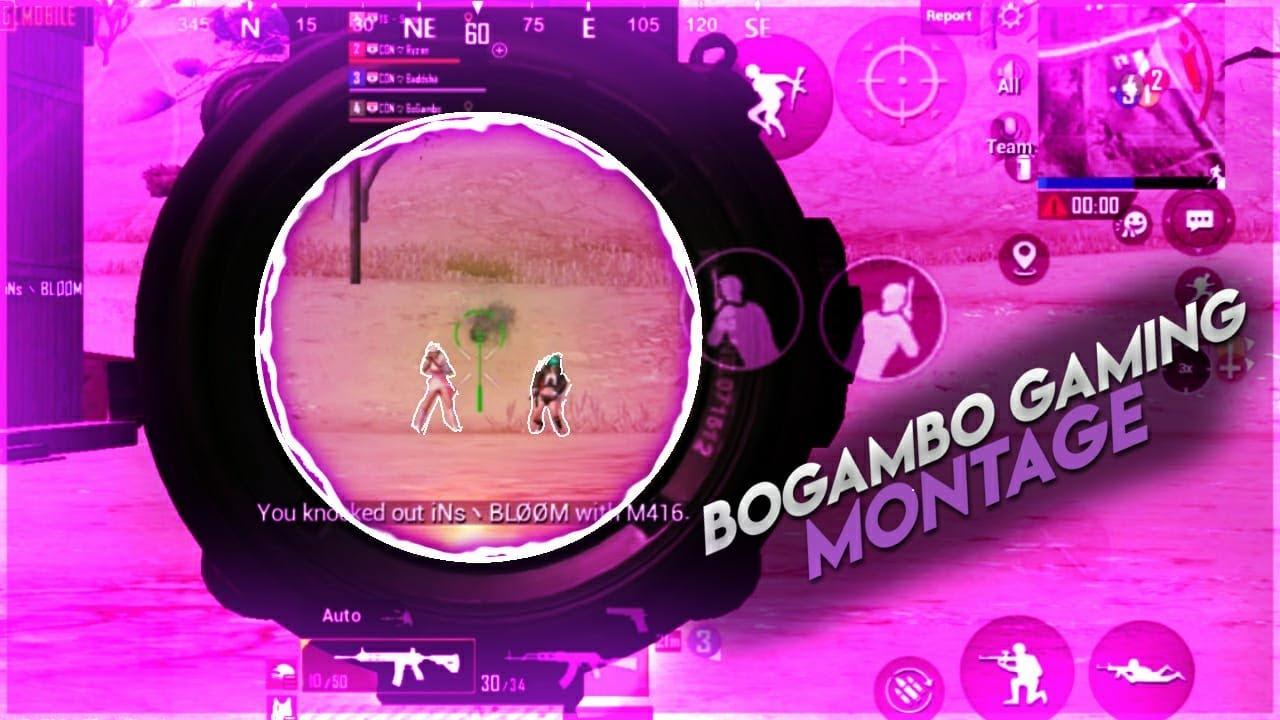 Bogambo