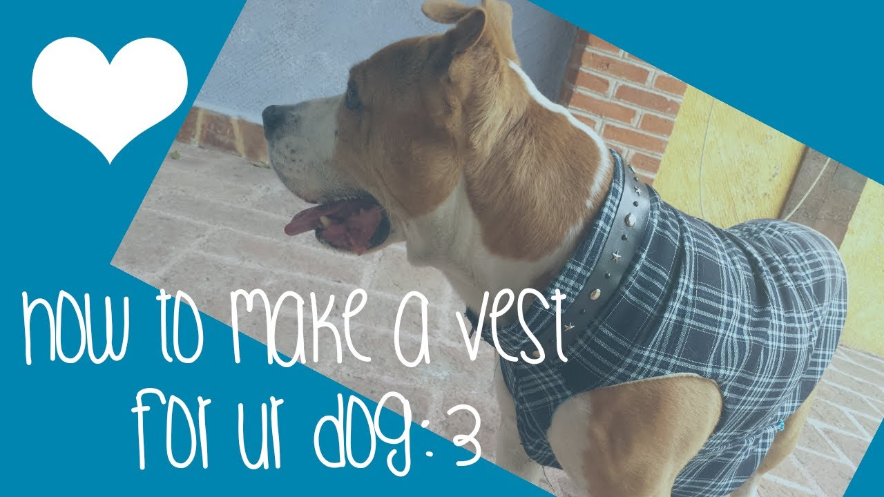 ♥How to make a sweater / vest for ur dog♥ - YouTube