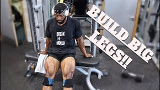 LEG WORKOUT you should be doing |  Full Quads/Hamstrings/Calves Routine