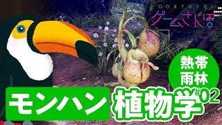 【ゲームさんぽ/MHW:IB ②】植物学者とモンハンの世界で生態系調査! 「古代樹の森」には案外進化した植物が多かった...!