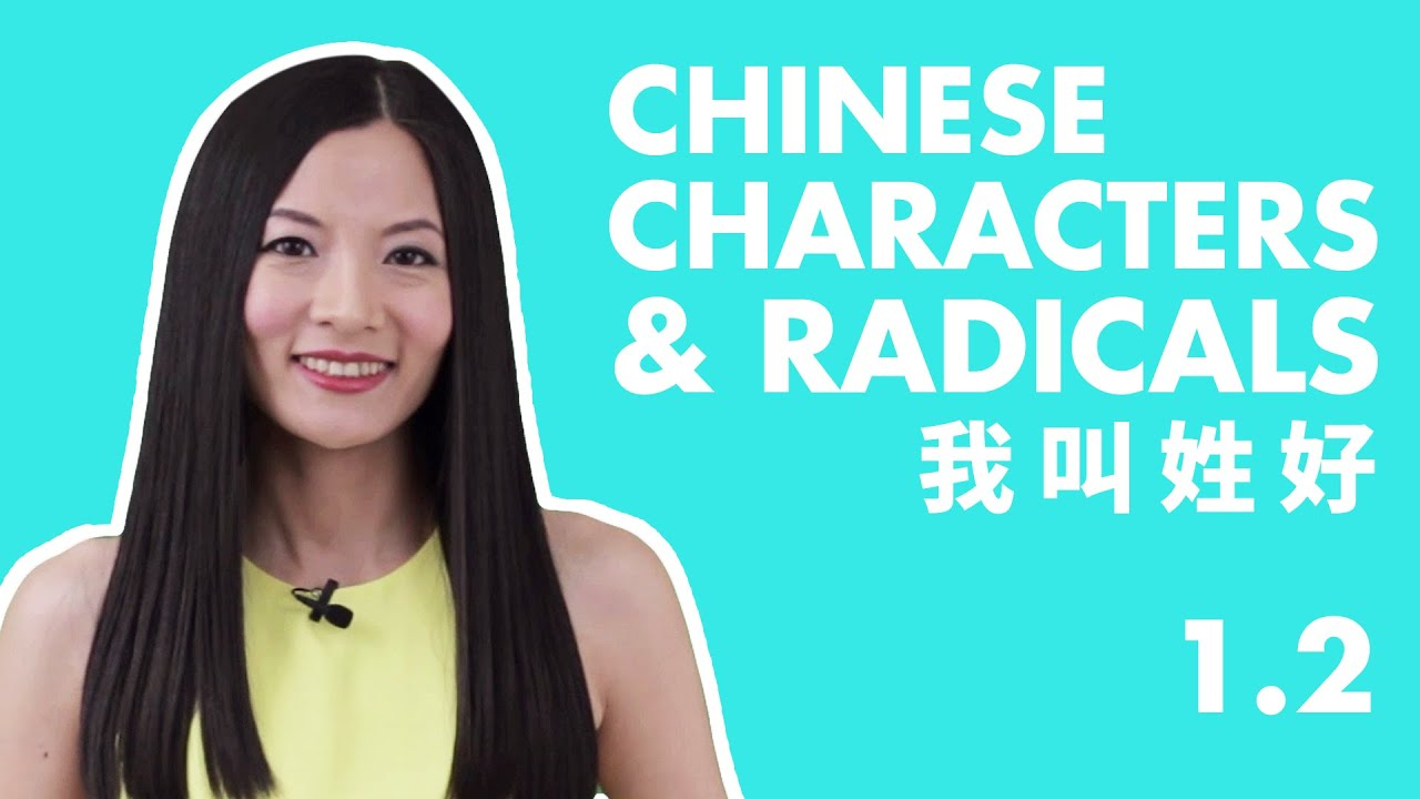 Learn Chinese Characters for Beginners 1.2 | Beginner Chinese Characters Course | HSK 1 Characters