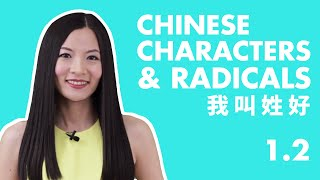 Learn Chinese Characters for Beginners 1.2   Beginner Chinese Characters Course   HSK 1 Characters
