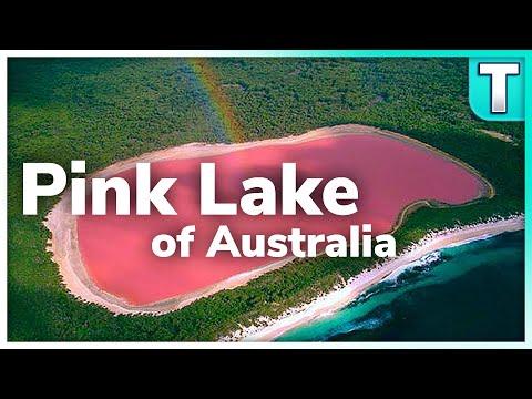 Don't Swim In This Water | Lake Hilliler Australia