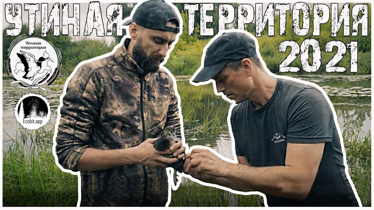 Утиная территория Новый Сезон Ecobit.app