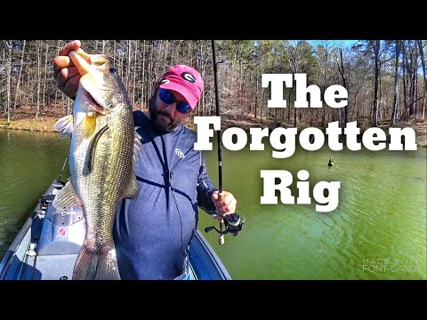 The Bass Fishing Rig I Forgot About - Beginner