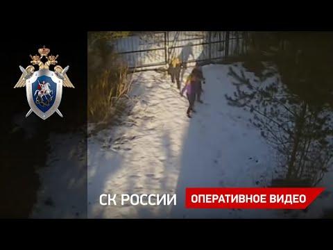 Проникновение подростков на дачный участок в Ленинградской области