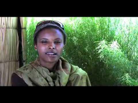 Somaliland Breakaway from Somalia in 1991 & never look back.