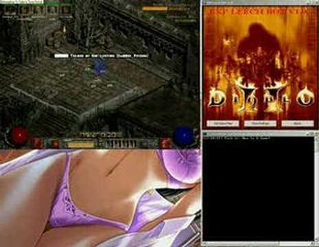 Diablo II EXP Leech Bot v1.0 (FULL DESKTOP VIEW)