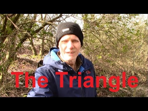 THE TRIANGLE: A forgotten forest reveals an old car, bottles and loads of stuff - relic hunting joy