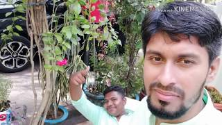 Happy Birthday My Husband | Surprise  For You | Birthday Wishes For My Husband