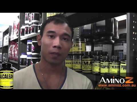 PrimaForce Alcalean Acetyl L Carnitine Product Information