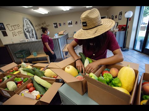Got $5? You Can Buy A Produce Box From Turlock Grange Youth