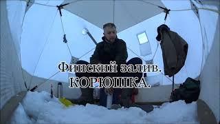 Финский залив КОРЮШКА