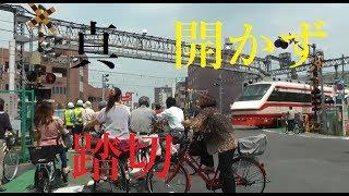 【踏切】真・開かず踏切 東武スカイツリーライン竹ノ塚駅前 thumbnail