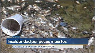 Denuncian contaminación de un ojo de agua en Zuazua