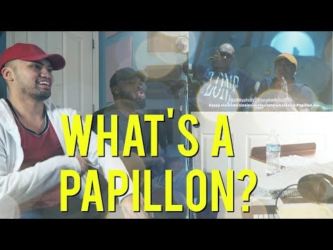 Jackson Wang - Papillon [MV] - (Reaction Video)