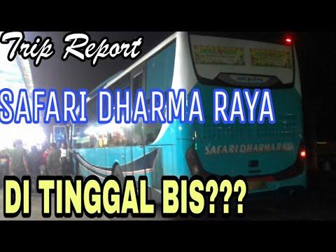 TRIP REPORT Po.Safari Dharma Raya (OBL) AA 1661 GY Jogja - Jakarta.  Di Tinggal ??