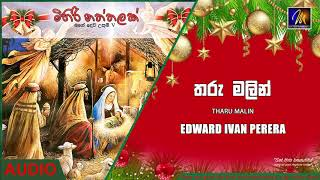 Tharu Malin - Edward Ivan Perera| Official Audio | MEntertainments Thumbnail