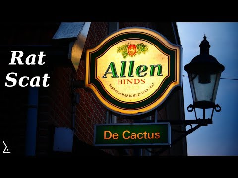 Allen Hinds, Sietse Huisman & Friends - Rat Scat | VvCL - Café de Cactus 2017