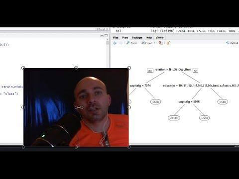מערכות לומדות: תרגול 3: עצי החלטה