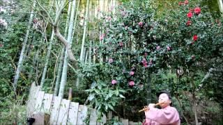 素敵な日本のメロディを篠笛で演奏しています。 I play a wonderful Jap...