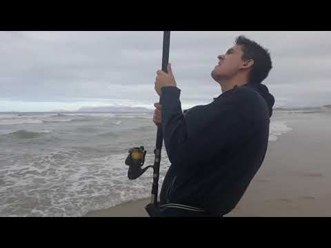 Shark Fishing With MMM Cape Town Fishing Adventures